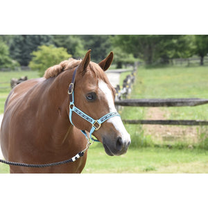Ribbon Safety Halter
