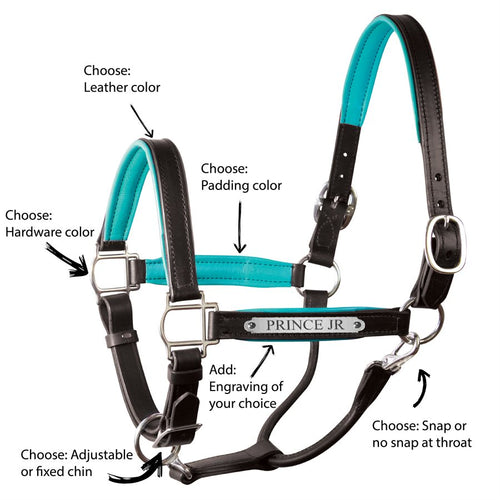 Custom Padded Leather Halter w/plate