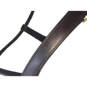 Leather Halter Thoroughbred - Brass Fittings with Engraved Horse Nameplate