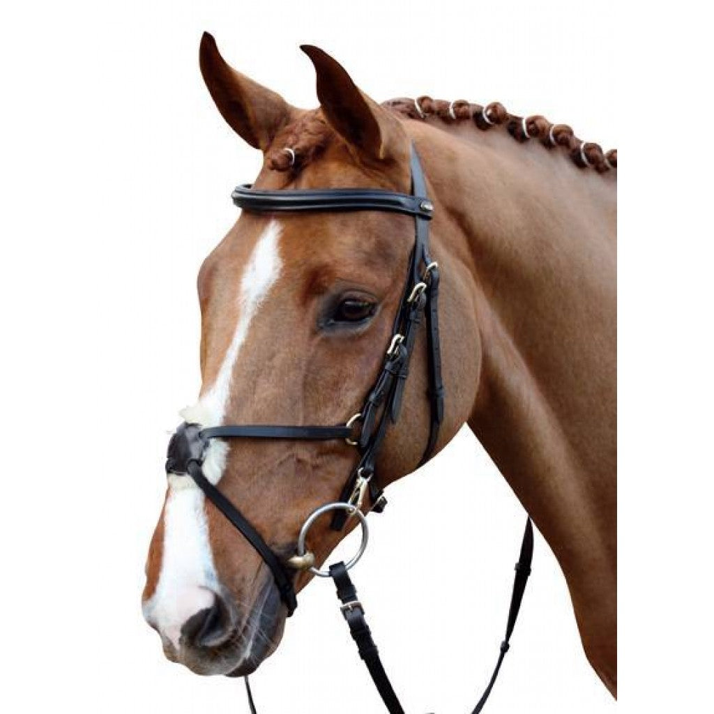 Grackle bridle with padded noseband - Black/Full size