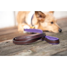 Load image into Gallery viewer, Padded Leather Dog Leash