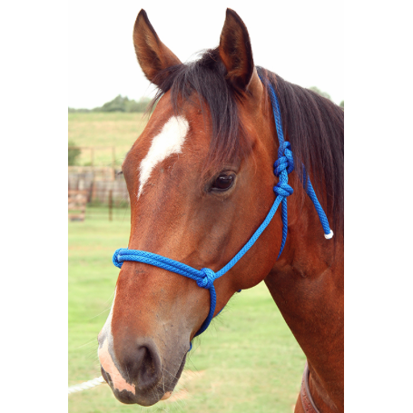 Basic Nylon Rope Halter-Over-Trot-Tacklet