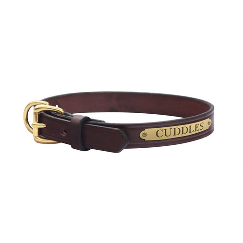 Flat Leather Dog Collar with plate