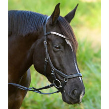 Load image into Gallery viewer, Azure Anatomic Italian Leather Bridle - Black