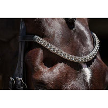 Load image into Gallery viewer, Mila Italian Leather Double Bridle