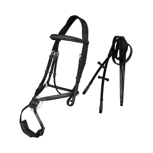 Deluxe Fancy Stitch Padded Grackle Bridle