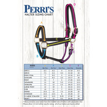 Load image into Gallery viewer, Track Style Turnout Leather Halter w/snap & plate