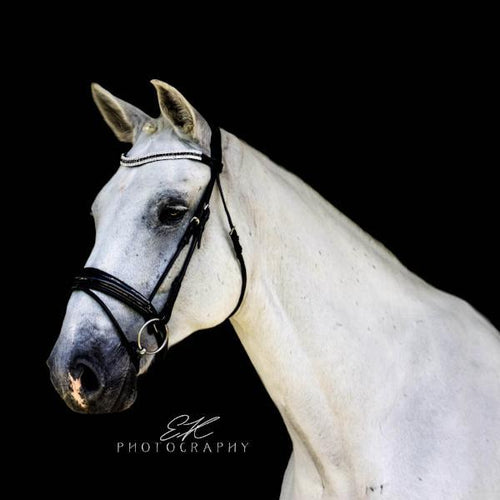 Amelie Italian Rolled Leather Bridle (Hanoverian)