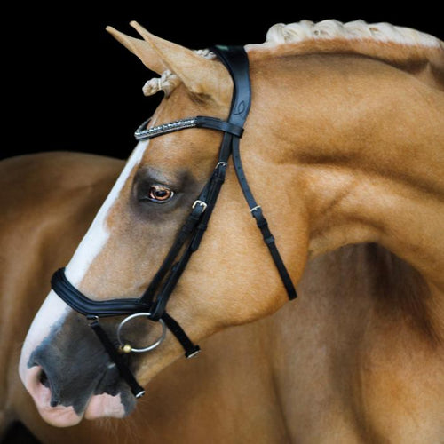 Mila Black Italian Leather Bridle - Warmblood w/nappa leather reins
