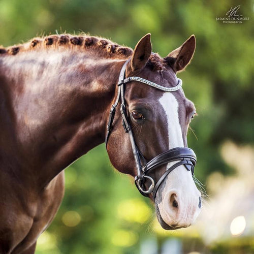 Anastasia Italian Leather Bridle (Convertible) Brown