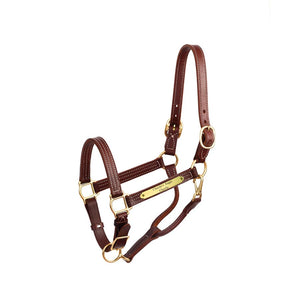 "Premium 1"" Leather Show Halter w/plate"