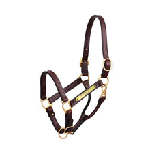 "Load image into Gallery viewer, Premium 1"" Leather Show Halter w/plate"