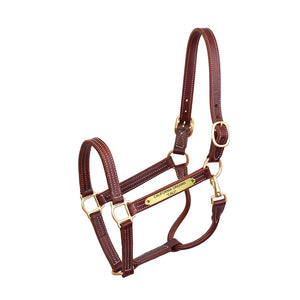 Professional Leather Show Halter w/plate