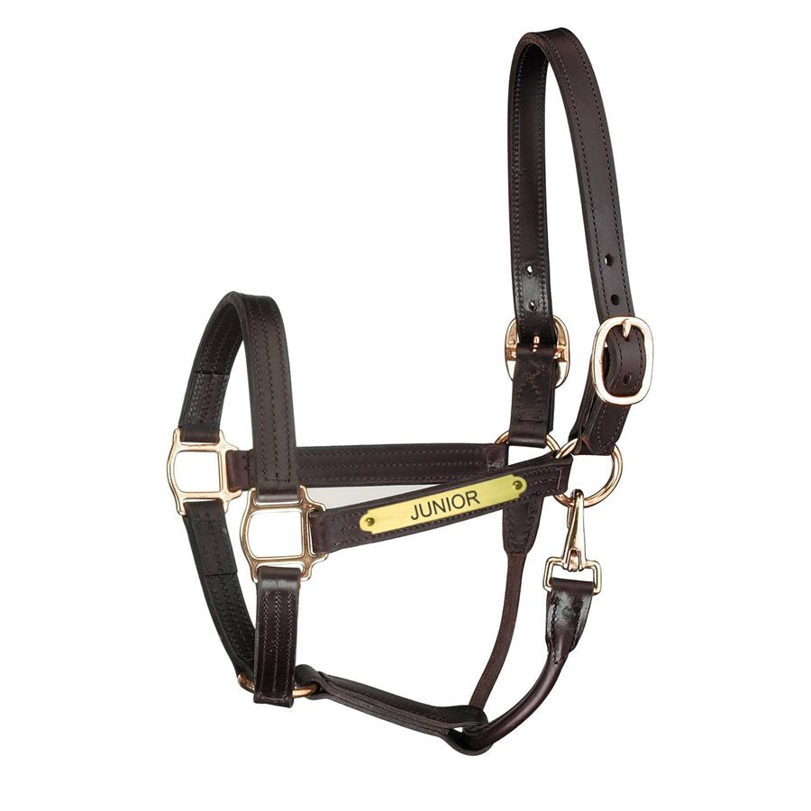 Premium Leather Track Style w/snap Show Halter w/plate