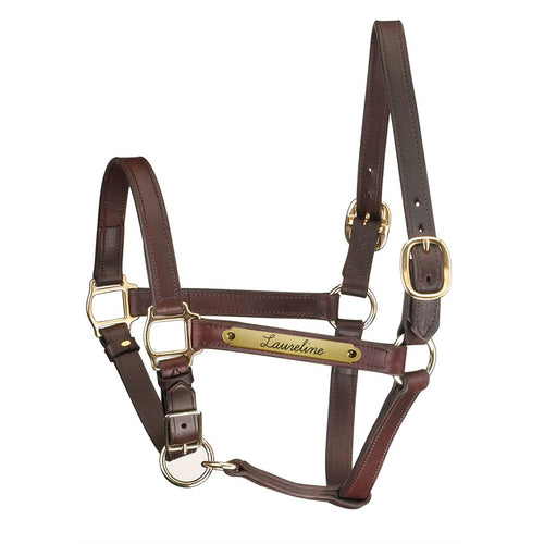 Track Style Leather Halter w/ adjustable chin and plate