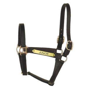 Track Style Leather Halter w/plate