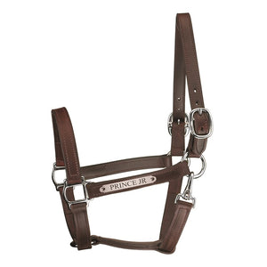 Track Style Turnout Leather Halter w/snap & plate