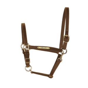 "3/4"" Leather Turnout Halter w/plate"