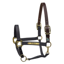 Load image into Gallery viewer, Premium Nylon Safety Halter w/plate