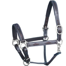 Load image into Gallery viewer, Fancy Braided Padded Leather Halter