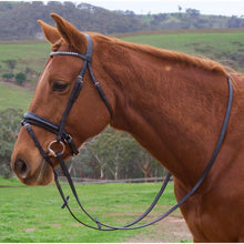 Load image into Gallery viewer, Premium Leather Bling Hanoverian Bridle-Tacklet-Tacklet