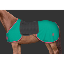 Load image into Gallery viewer, Design your own Eurofit MER Exercise Rug System