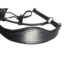 Load image into Gallery viewer, Black Leather Halter - Patent Piping with Engraved Horse Nameplate