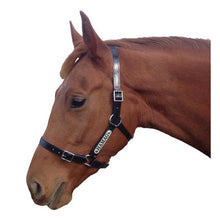 Load image into Gallery viewer, Black PVC Halter - Silver Fittings with Engraved Horse Nameplate