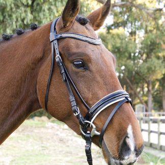Performance Hanoverian Bridle with white padding-Tacklet-Tacklet