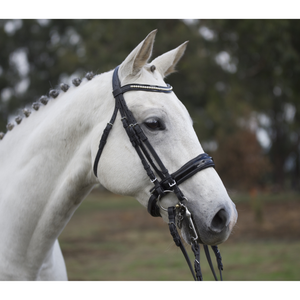Premium Patent Leather Double Bridle-Tacklet-Tacklet