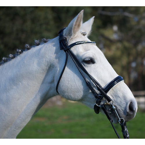 Performance Rolled Leather Double Bridle-Tacklet-Tacklet