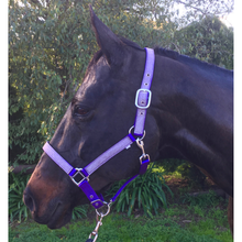 Load image into Gallery viewer, Over-Trot Glitter Halter-Over-Trot-Tacklet
