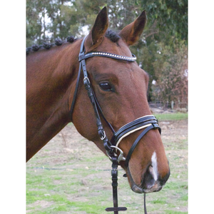 Performance Hanoverian Bridle with cream padding-Tacklet-Tacklet