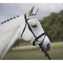 Load image into Gallery viewer, Premium Patent Leather Ultra-Bling Hanoverian Bridle-Tacklet-Tacklet