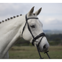 Load image into Gallery viewer, Premium Leather Bling Hanoverian Bridle