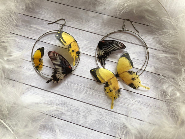 Black&Gold Butterfly Earrings of Silk