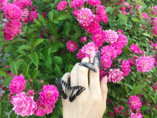 Boho Chic Set of Butterfly Rings (Silver)