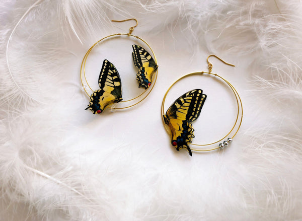 Swallowtail Butterflies Hoops Earrings