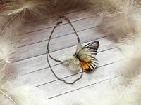 Ivory Butterfly Anklet