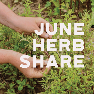 Fresh Medicinal Herb Share - June