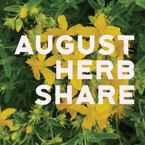 Fresh Medicinal Herb Share - August