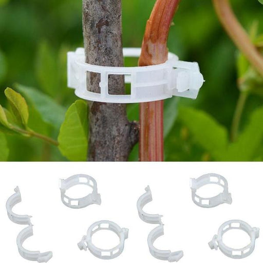 Plant Support Clamp