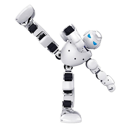 Intelligent Humanoid Robotic