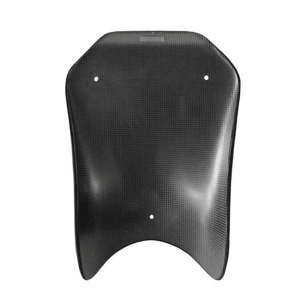 Seat bench plate 10 mm carbon, S 1000 RR 2019-