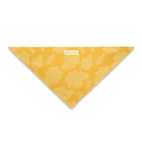 Golden Yarrow Bandana WS