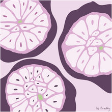 Load image into Gallery viewer, Garlic Cross-Section Art Print