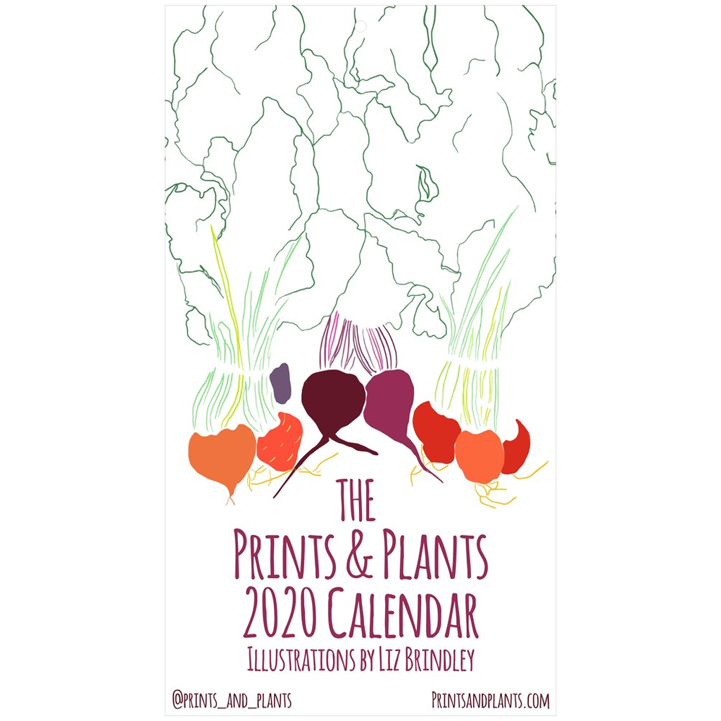 2020 Illustrated Food Calendar