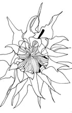 Load image into Gallery viewer, Printable Coloring Book Download