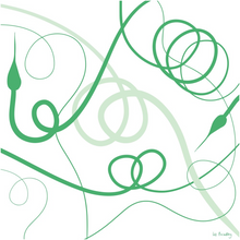 Load image into Gallery viewer, Garlic Scape Print