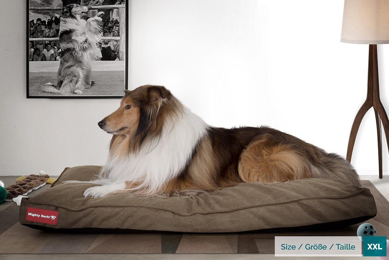 Classic Mattress Dog Beds